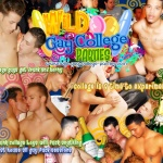 Wild Gay College Parties