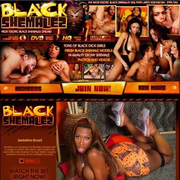Black Shemalez