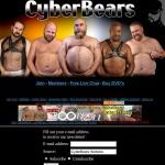 Cyber Bears