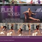 Flex Models