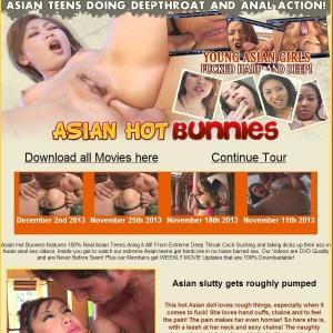Asian Hot Bunnies